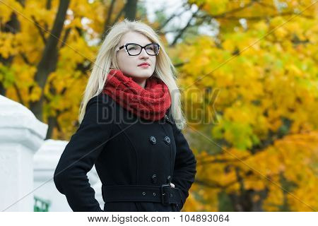 Blonde attractive young woman in black and white cat eye glasses looking away at autumn yellow trees