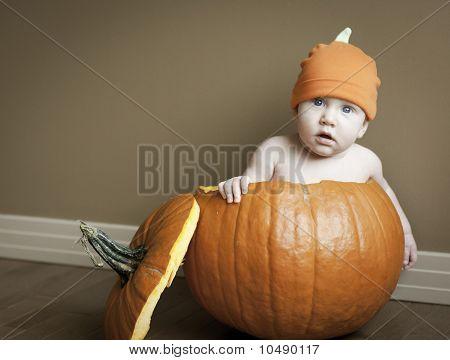 Baby boy in pumpkin