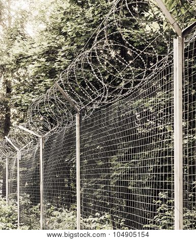 barber fence in the forest blockaded zone