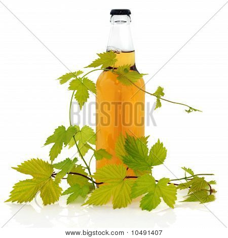 Beer Bottle And Hop Leaves