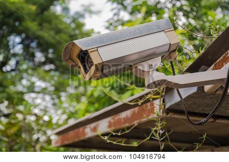 Dirty outdoor security camera and video on grass roof.