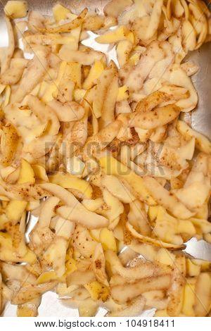 Potato Peels In The Kitchen Sink