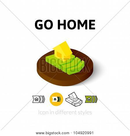 Go home icon in different style