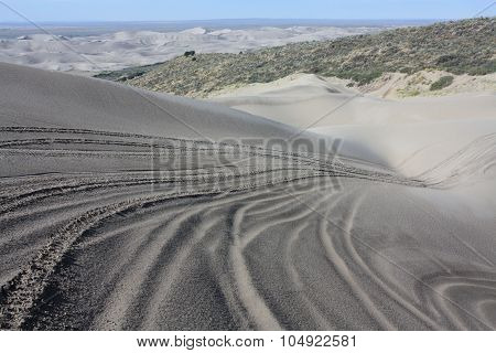 Tracks in the sand at St Anthony Idaho