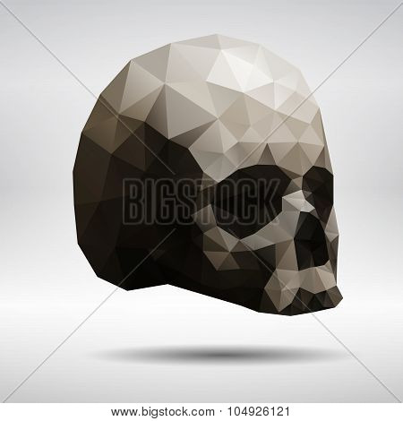 Triangular Skull