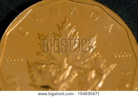 Canada (word) On Canadian Gold Maple Leaf Coin