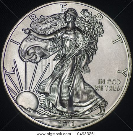 Us Silver Eagle Coin (obverse)
