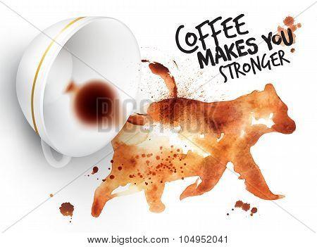 Poster Wild Coffee Bear