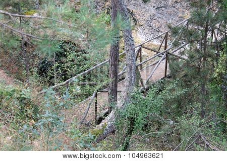Wooden bridge over mountain river forest nature reserve