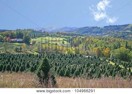 Appalachian Mountain View