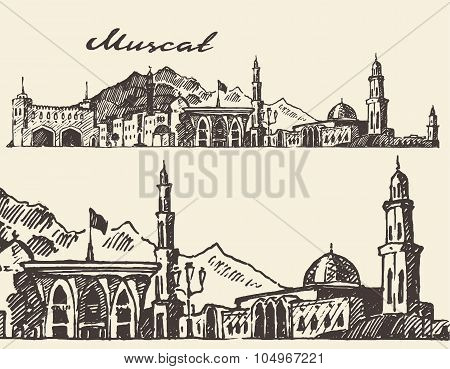 Muscat engraved illustration hand drawn sketch