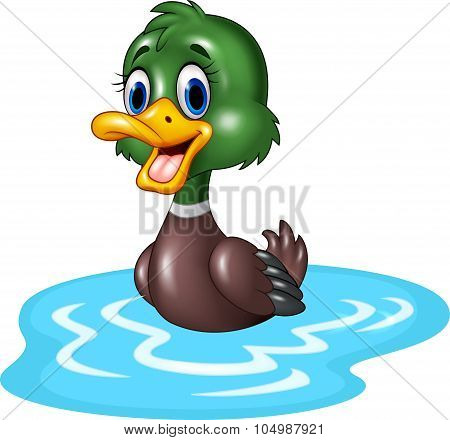 Cartoon duck floats on water
