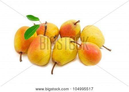 Several Duchess Pear On A Light Background