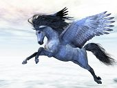 picture of pegasus  - Pegasus flies high in the air over the clouds - JPG