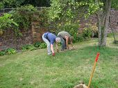Gardeners Working In A Garden