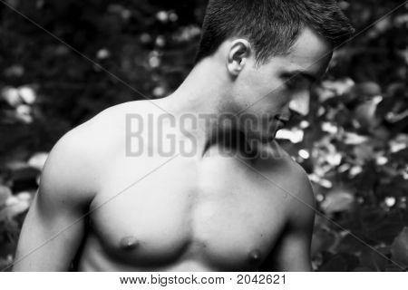 Dustin 28 Bw