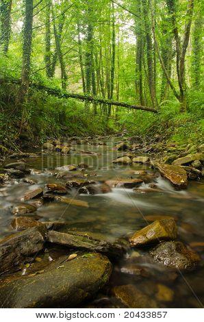 bentakorreka stream