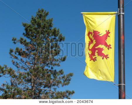The Lion Rampant Banner