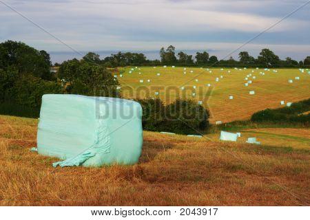 Plastic Hay Bails Landscape