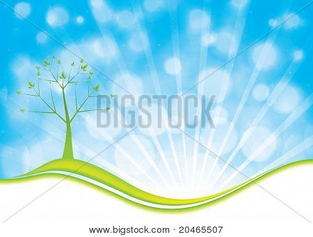 Summer Natural Background With Tree And Blue Sky
