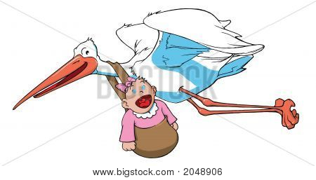 Stork Carrying A Baby Girl