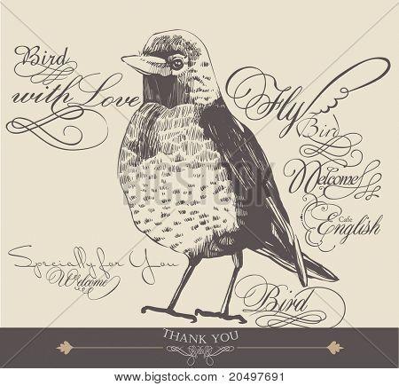 hand-drawn bird with elegance calligraphy design