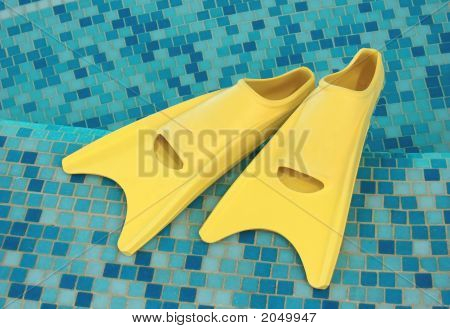 Yellow Flippers On The Coast