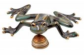 foto of phylacteries  - ceramic frog and coins isolated on white - JPG