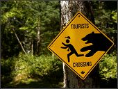 Tourists Crossing poster