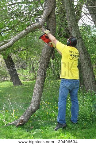 Man reaching to trim a dead branch with a chainsaw