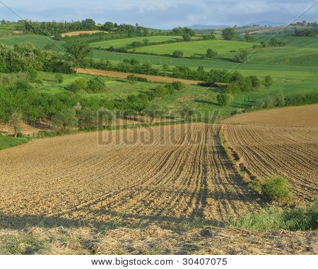 Tuscan countryside with plowed field in foreground