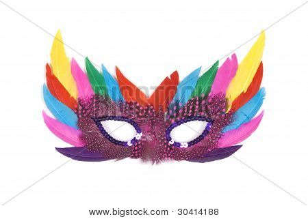 Beautiful feathered masquerade mask on white background
