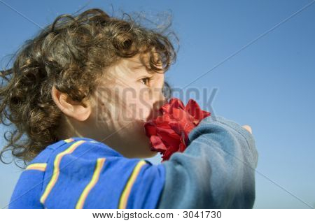 Boy Smelling A Red Rose