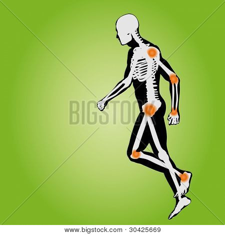 High resolution conceptual white and black man anatomy illustration on green background for medical,medicine,health,rheumatism,osteoporosis,muscle,ache,arthritis,inflammation,painful or bones design