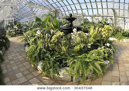 A black fountain surrounded by beautiful, tall foliage under the glass cover of the Franklin Park Conservatory, Columbus, OH.  Fish-eye effect.