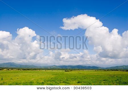Fields and meadows. On a background of mountain.