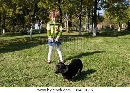 The little girl walks with a dog (dachshund) in park..