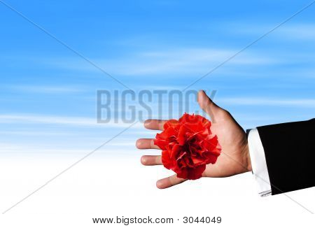Red Flower On Hand