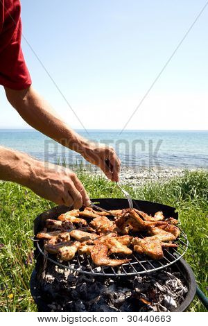 Preparation of a barbecue from a chicken on seacoast.