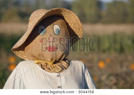 Scarecrow Women