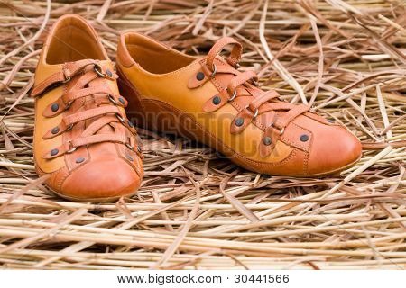 New female shoes from a leather on a background of a dry grass.
