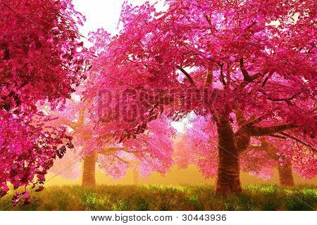 Mysterious Japanese Cherry Blossom Tree Sakura 3D render