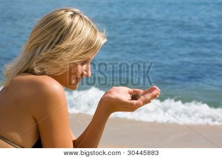 Attractive girl sitting on the beach and watching the little sea urchin.