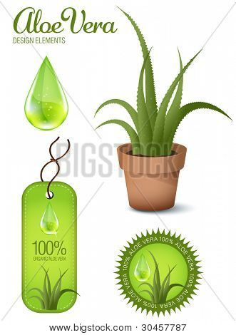 Aloe Vera, design elements, illustration.