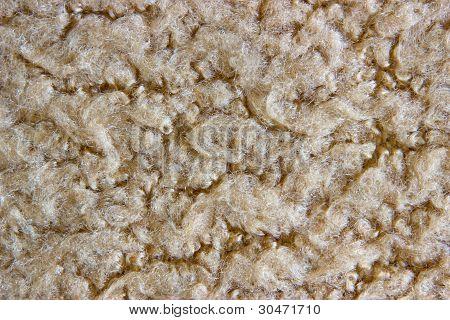 Sheep Fur Closeup Texture For Background