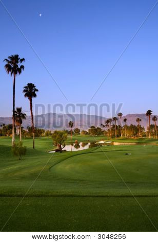 Early Morning Golf