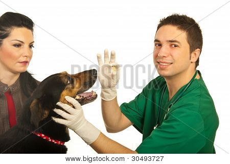Happy Vet Give Pill To Dog