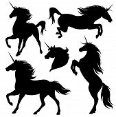 foto of unicorn  - set of fine unicorn silhouettes  - JPG
