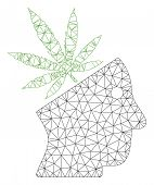 Mesh Cannabis Thinking Head Polygonal 2d Vector Illustration. Carcass Model Is Based On Cannabis Thi poster