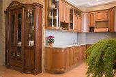 A beautiful interior of a domestic kitchen in classical style. Natural fern. poster